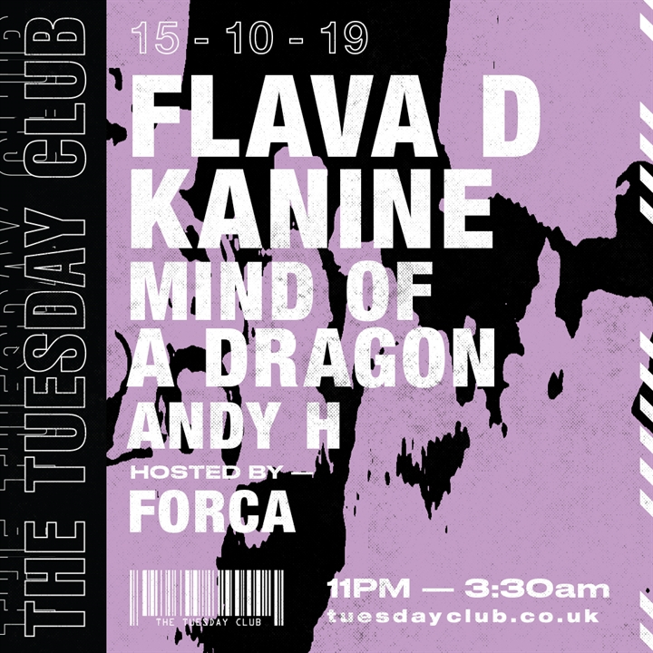 Flava D, Kanine, Mind Of A Dragon, Forca
